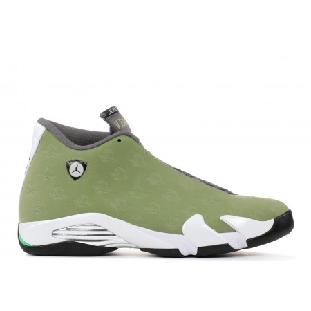 Air Jordan 14 Retro Oregon Volleyball